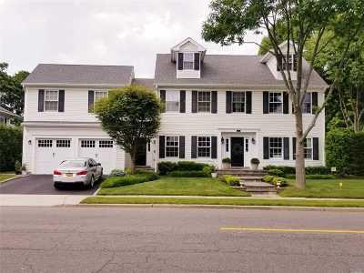 Garden City Single Family Home For Sale: 117 Chester Ave