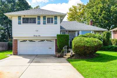 Syosset Single Family Home For Sale: 25 Market Dr
