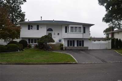 W. Babylon Single Family Home For Sale: 410 Chelsea Ave
