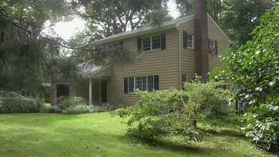 Port Jefferson Single Family Home For Sale: 112 Roosevelt Ave