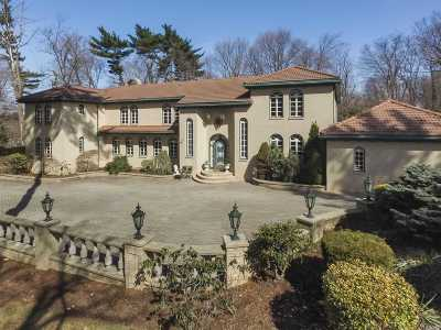 Old Westbury Single Family Home For Sale: 5 Birch Hill Ct