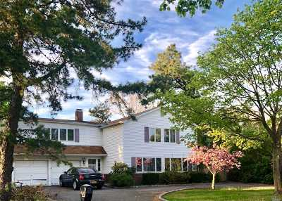 Patchogue Single Family Home For Sale: 95 Camille Ln