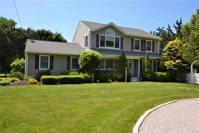 Westhampton Single Family Home For Sale: 31 Tanners Neck Ln