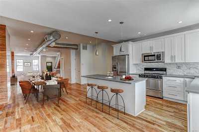 Brooklyn Multi Family Home For Sale: 105 Schaefer St