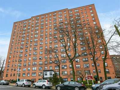 Rego Park Co-op For Sale: 99-60 63rd Rd #3Aa
