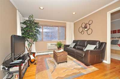 Kew Gardens Condo/Townhouse For Sale: 118-82 Metropolitan Ave #3A