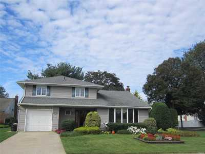 Wantagh Single Family Home For Sale: 1762 Harold Ave