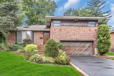 Plainview Single Family Home For Sale: 20 Maplewood Dr