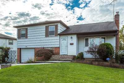 Syosset Single Family Home For Sale: 14 Walnut Dr