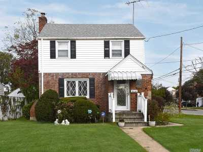 Hempstead Single Family Home For Sale: 119 Lucille St