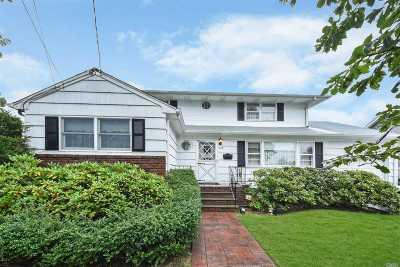Massapequa Park Single Family Home For Sale: 129 Fitzmaurice St