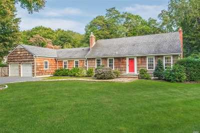 Smithtown Single Family Home For Sale: 181 Hauppauge Rd