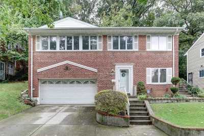 Queens Village Single Family Home For Sale: 218-39 Sawyer Ave