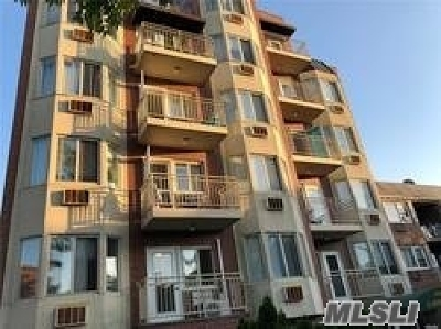 Flushing Condo/Townhouse For Sale: 140-24 31 Dr #5