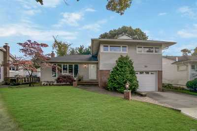 East Meadow Single Family Home For Sale: 765 Park Ln