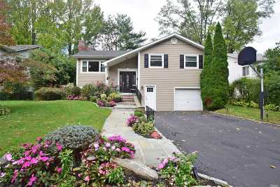 Great Neck Single Family Home For Sale: 10 Radcliff Dr