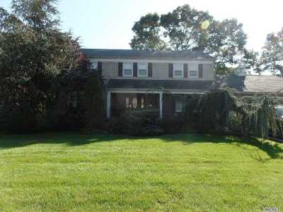 Amityville Single Family Home For Sale: 74 Glenmalure St