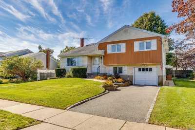 Hicksville Single Family Home For Sale: 24 N Fordham Rd