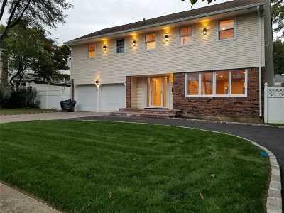 Westbury Single Family Home For Sale: 528 Ellison Ave