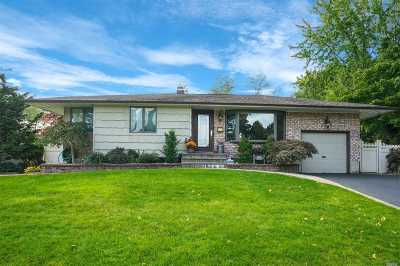 Commack Single Family Home For Sale: 46 Rita Cres