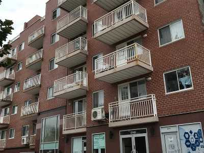 Rego Park Condo/Townhouse For Sale: 64-75 Austin St #2B