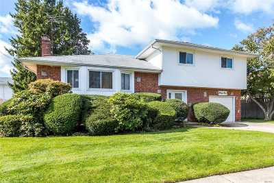 Plainview Single Family Home For Sale: 45 Belmont Ave