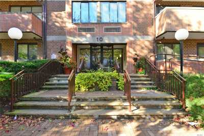 Great Neck Condo/Townhouse For Sale: 10 Canterbury Rd #3F