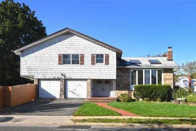 Valley Stream Single Family Home For Sale: 895 Park Lane