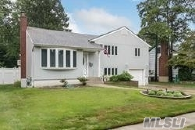 Wantagh Single Family Home For Sale: 170 Tally Ln