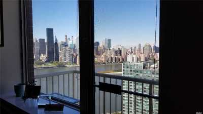 Long Island City Co-op For Sale: 4-74 48th Ave #Ph1C