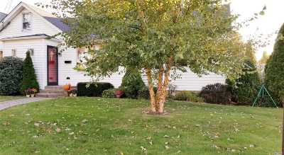 Bethpage Single Family Home For Sale: 14 Leroy Ave