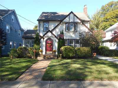 Rockville Centre Single Family Home For Sale: 20 Royal Rd