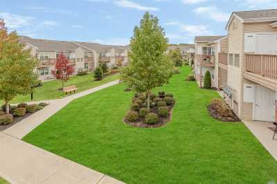 Valley Stream Condo/Townhouse For Sale: 807 Willow Ln