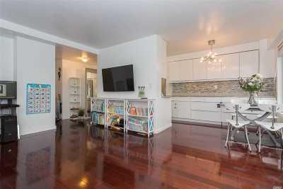 Long Island City Co-op For Sale: 33-43 14th St #8B