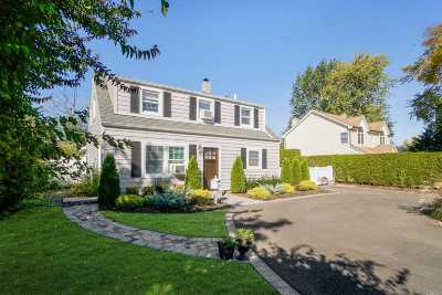Levittown Single Family Home For Sale: 154 Spring Ln