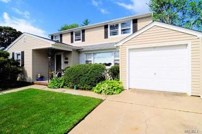 Wantagh Single Family Home For Sale: 3520 Roger Dr