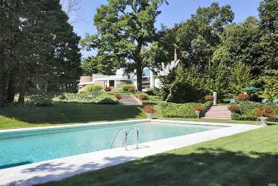 Old Westbury Single Family Home For Sale: 20 Horseshoe Rd