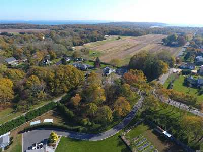 Cutchogue Residential Lots & Land For Sale: 2995 Eugenes Rd