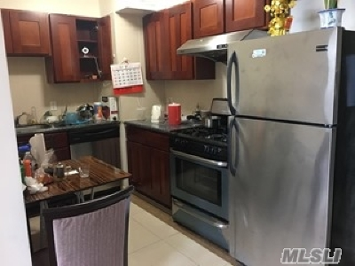 Flushing Condo/Townhouse For Sale: 37-20 Prince St #10H