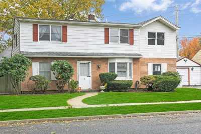 Levittown Single Family Home For Sale: 2 Iris Ln