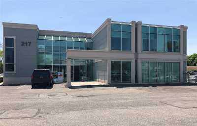 Commercial Lease For Lease: 217 Merrick Rd