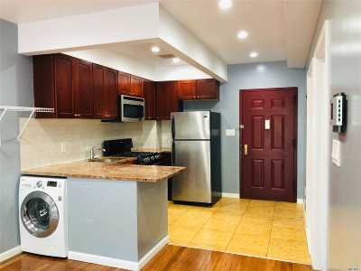 Fresh Meadows Condo/Townhouse For Sale: 71-33 162nd St #4F