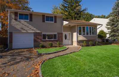 East Meadow Single Family Home For Sale: 245 Clearmeadow Dr