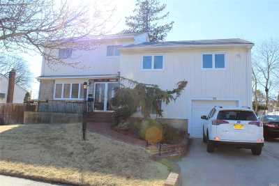 Bethpage Single Family Home For Sale: 83 Caffrey Ave