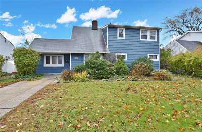Levittown Single Family Home For Sale: 103 Hamlet Rd