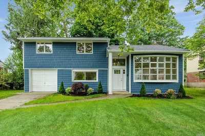 Plainview Single Family Home For Sale: 4 Coronet Ln
