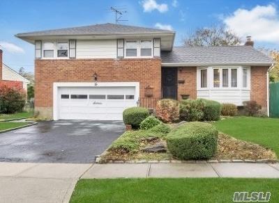 Hicksville Single Family Home For Sale: 16 Balsam Dr