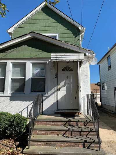 New Hyde Park Single Family Home For Sale: 43 Lewis Ave