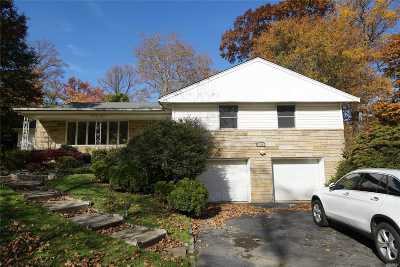 Great Neck Single Family Home For Sale: 111 Grace Ave Ave