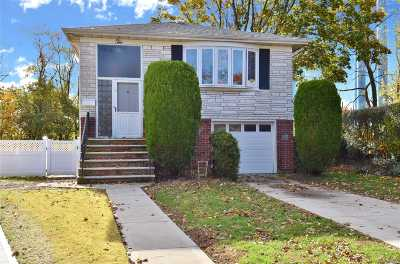 New Hyde Park Single Family Home For Sale: 10 Atlas Ct